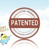 特許出願から登録までの期間は約14ヶ月