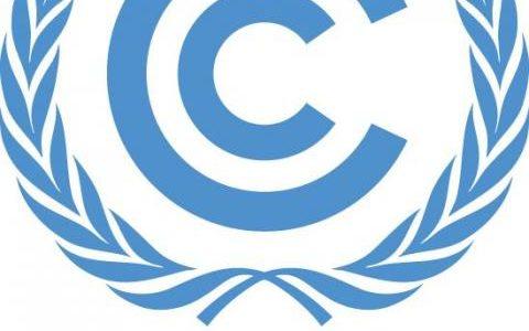気候変動枠組条約締約国会議 (COP)とは
