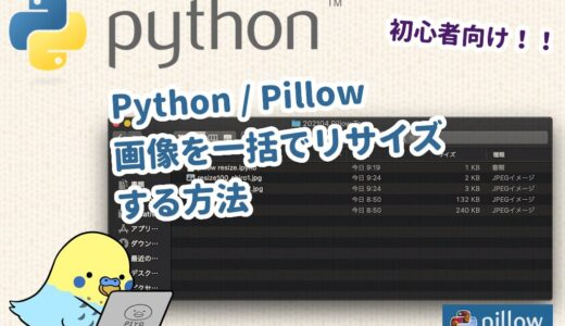 【Python】Pillow 複数の画像を一括でリサイズする方法